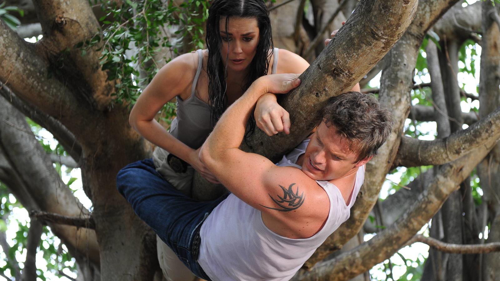 The Glades season 5